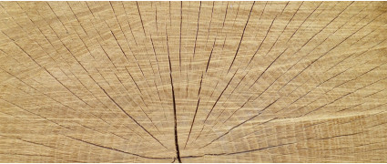 Почему древесина растрескивается и как этого избежать